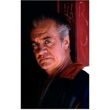 The Sopranos Tony Sirico as Paulie